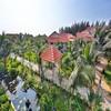 Madam Cúc Sài Gòn Emerald Resort