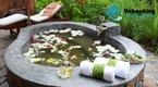 Hồ Tràm Beach Resort & Spa  - Thiên đường nghỉ dưỡng