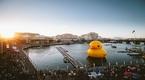Chú vịt khổng lồ Rubber Duck