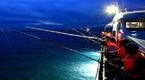 Câu mực đêm - khám phá món quà của biển đảo Phú Quốc