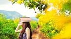 Đà Lạt tháng 10 rực vàng mùa hoa Dã Quỳ (P2)