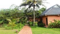 Bungalow - Garden View